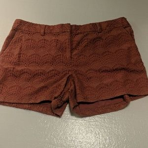 Ann TAYLOR LACE SHORTS 16